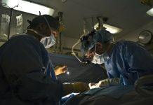 ניתוח אף החלמה