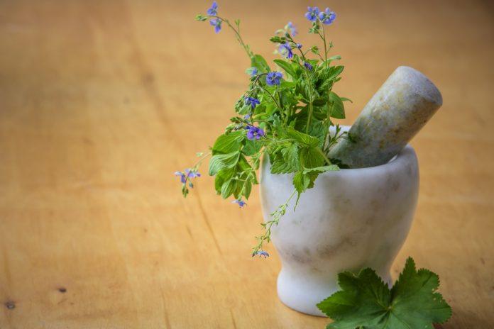 צמחי מרפא סיניים – כוח הריפוי